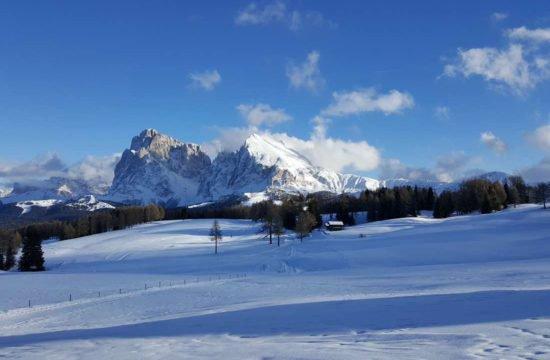 pechererhof-fiè-allo-sciliar-alpe-di-suisi-alto-adige (10)