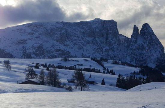 pechererhof-fiè-allo-sciliar-alpe-di-suisi-alto-adige (11)