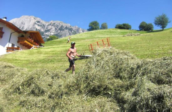 pechererhof-fiè-allo-sciliar-alpe-di-suisi-alto-adige (14)