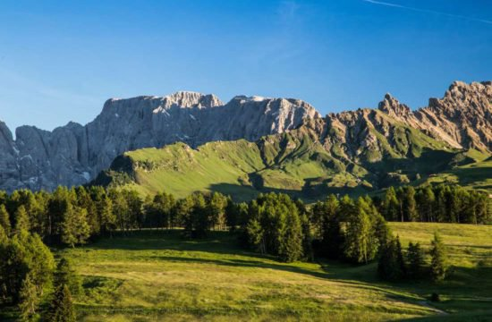 pechererhof-fiè-allo-sciliar-alpe-di-suisi-alto-adige (25)