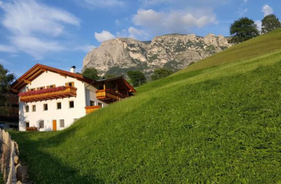 pechererhof-fiè-allo-sciliar-alpe-di-suisi-alto-adige (6)