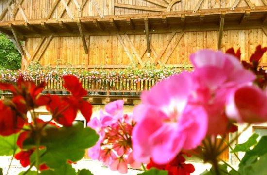 Urlaub am Bauernhof - Pechererhof in Voels am Schlern / Südtirol 2