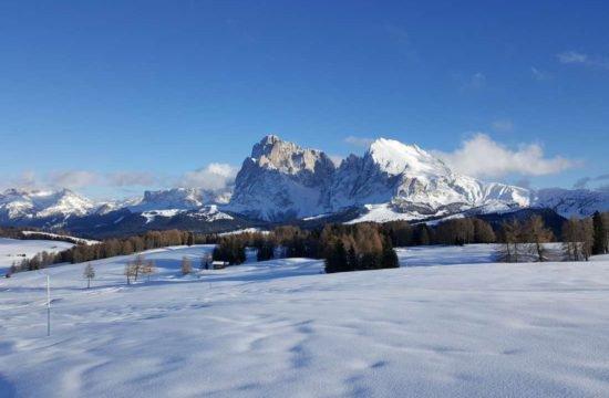 Urlaub am Bauernhof - Pechererhof in Voels am Schlern / Südtirol 5