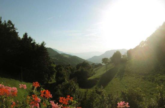 Urlaub am Bauernhof - Pechererhof in Voels am Schlern / Südtirol 8