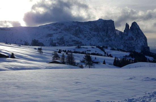 winterurlaub-auf-dem-bauernhof (1)